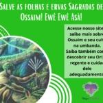 Salve as folhas e ervas Sagradas de Ossaim. Ewê Ewê Asà!