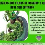 Quizilas dos filhos de Ossaim: o que deve ser evitado?