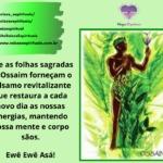Salve Ossaim, o senhor das folhas sagradas de umbanda!