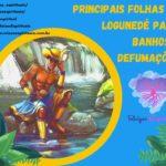Principais folhas de Logunedé para banhos e defumações