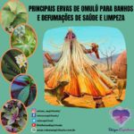 Principais ervas de Omulú para banhos e defumações de saúde e limpeza